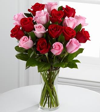 Pink red roses send flowers to jordan mightylinksfo